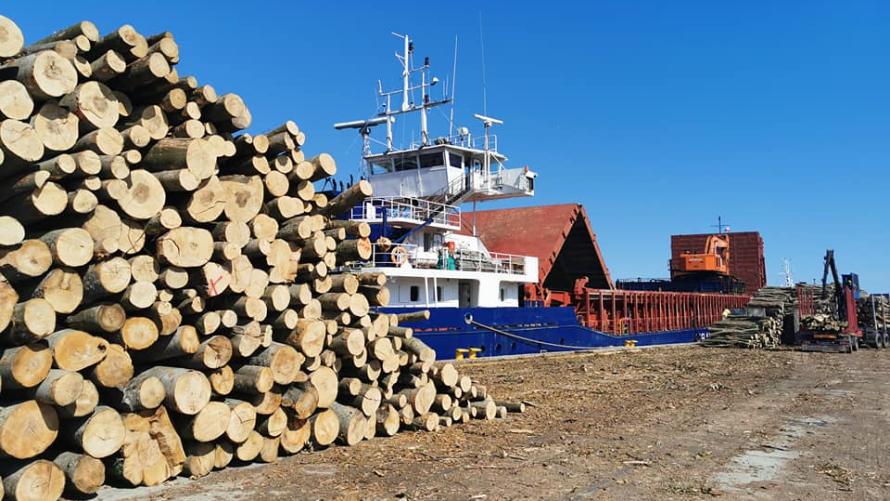 Blisko 15 000 ton przeładunków w sierpniu