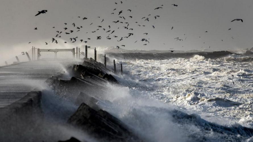 Silny wiatr w strefie brzegowej