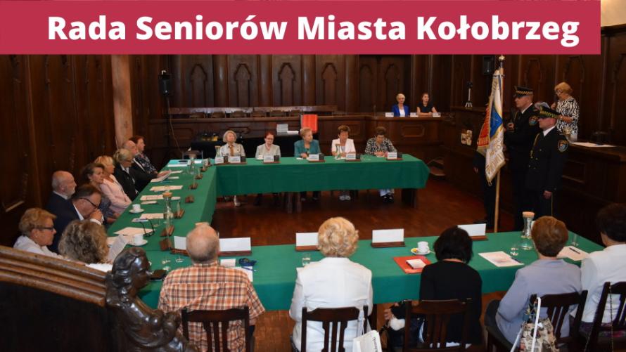 Projekt - Profesjonalne i zaangażowane Rady Seniorów