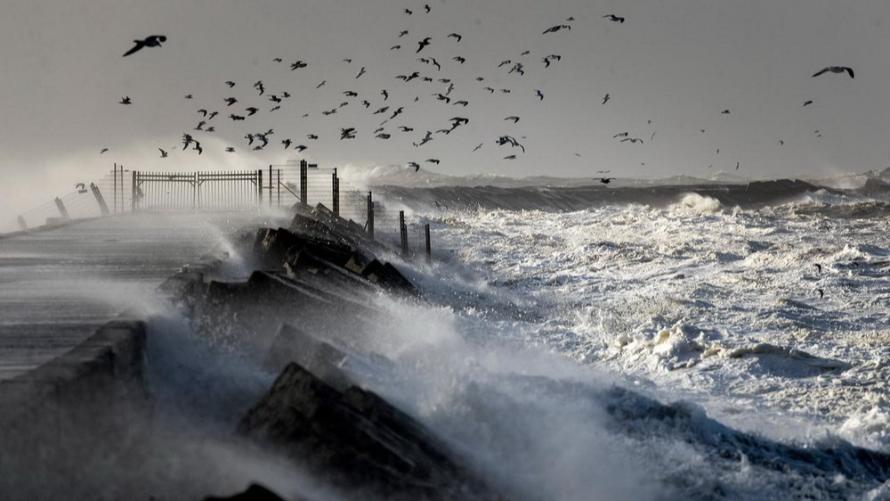Silny wiatr w strefach brzegowych